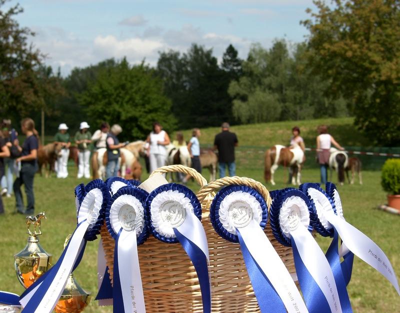 Schleifenkorb und Ehrenpreise bei Pferde der Welt