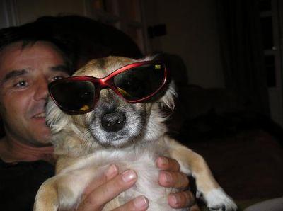 Linda...la primera perrita que recogimos