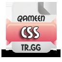 https://img.webme.com/pic/q/qameen/css.png