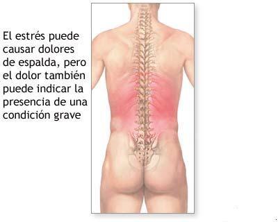 Los dolores bajo los bordes a la derecha en los riñones