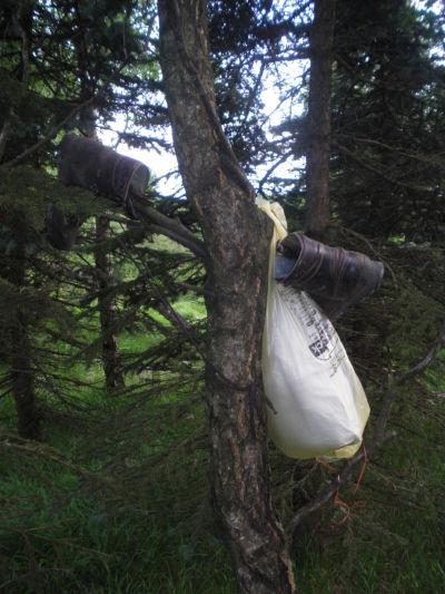 Die reh becca wandern von altenberg zum fichtelberg for Riesen schuhschrank