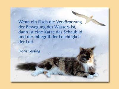 Renate Pircher Kreatives Lebensweisheiten Katzen Texte