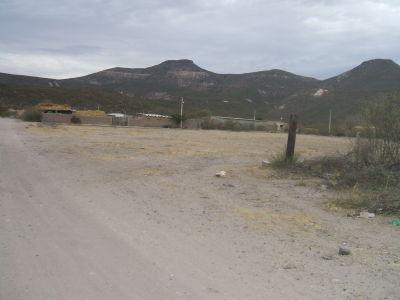 El Yano Y Los Picachos