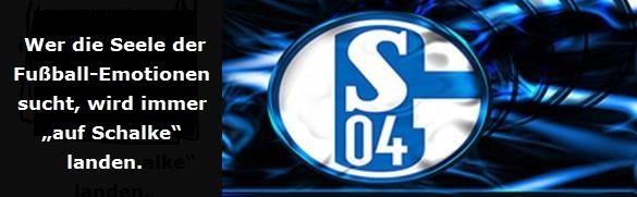 Eigenentwurf Emotionen Schalke