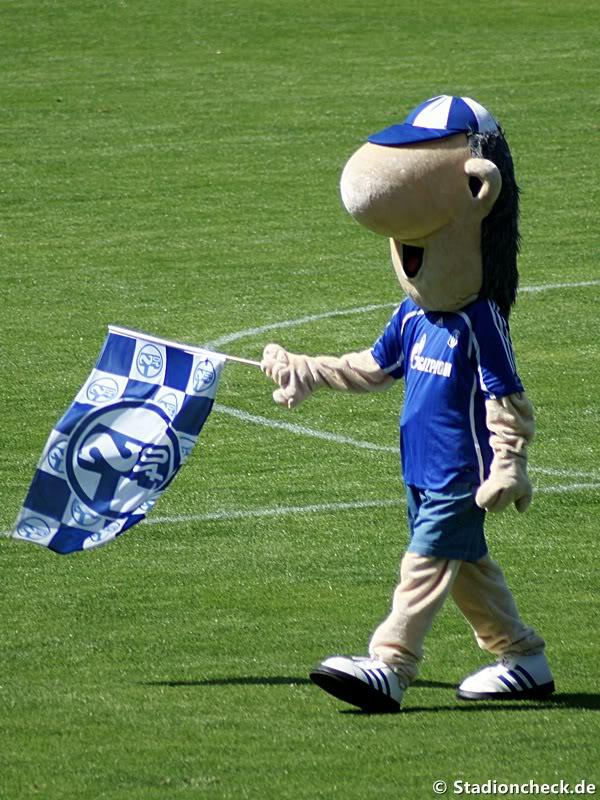 Maskottchen Erwin mit Fahne auf dem Platz