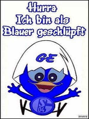 Als Blauer aus dem Ei geschlüpft