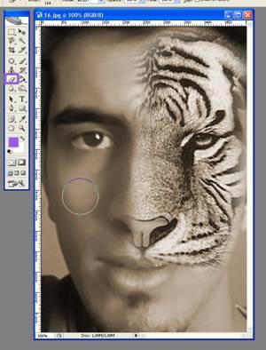 Photoshopta 2 Resmi Birleştirme