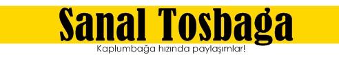 sanaltosbaga.tr.gg
