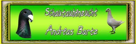 Zur HP non Andreas