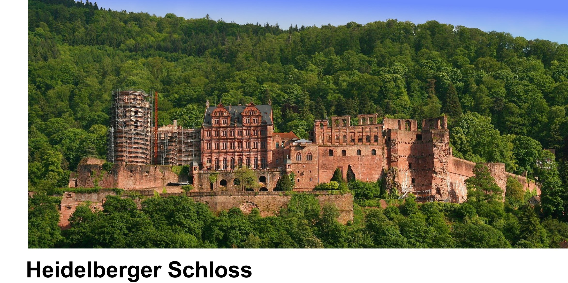 schl sser und burgen in baden w rttemberg heidelberger schloss. Black Bedroom Furniture Sets. Home Design Ideas