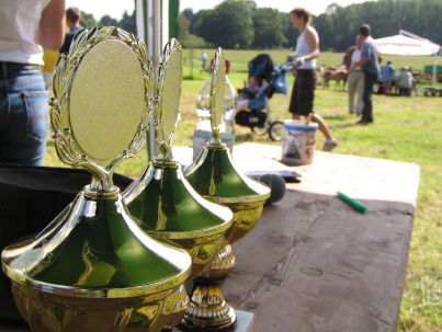 Mit Ehrenpreisen wurde beim schwäbischen Fohlenchampionat nicht gegeizt!