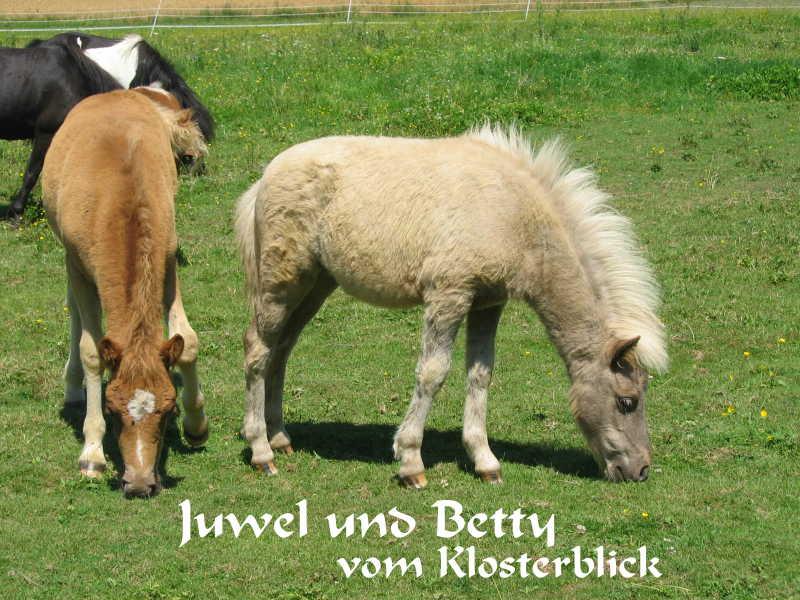 Juwel und Betty vom Klosterblick, Züchter und Besitzer Josef Kaufmann