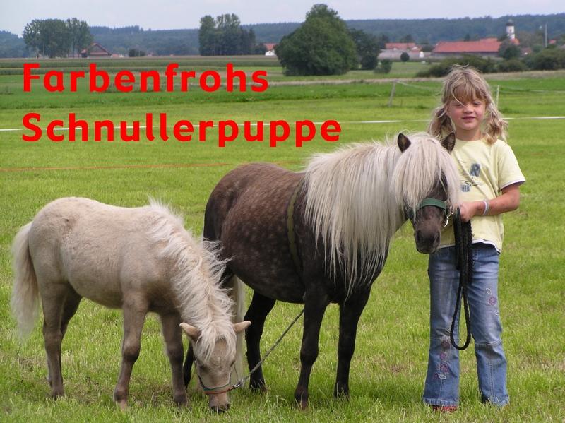 Farbenfrohs Schnullerpuppe, Auktionsfohlen für Babenhausen
