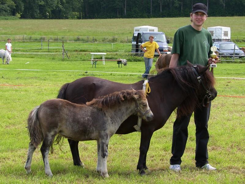 Tagessieger der Folenschau 2007 in Gerbishofen wurde das Partbred-Stutfohlen Kirchweihtals Sunligt, Züchter und Besitzer Florian Zech, Oberostendorf