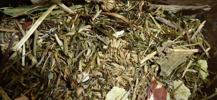 Herbs in der Nahaufnahme