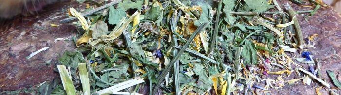 LandPartie Kräuter-Mix mit Blüten Nahansicht