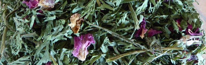 Möhrengrün mit Rosenblütenblättern Nahaufnahme