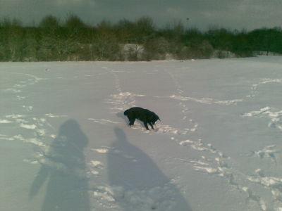 Schneesteine suchen, einfach toll
