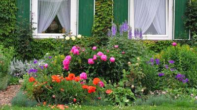 skm garten und landschaftsbau g nter m ller die aktuelle info staudenbeet. Black Bedroom Furniture Sets. Home Design Ideas