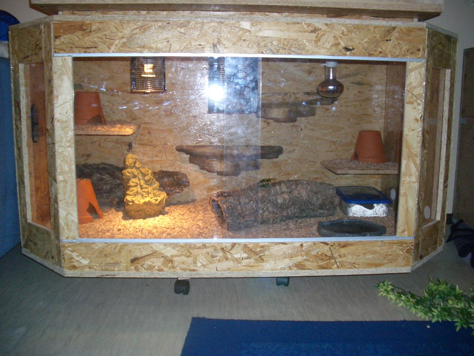 einfach tierisch terrarium. Black Bedroom Furniture Sets. Home Design Ideas