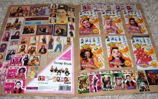 Image result for spice girls sticker album