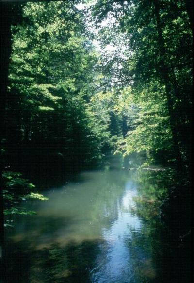uzun göl
