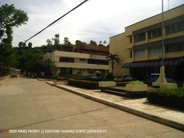 Easter visayas state university mis