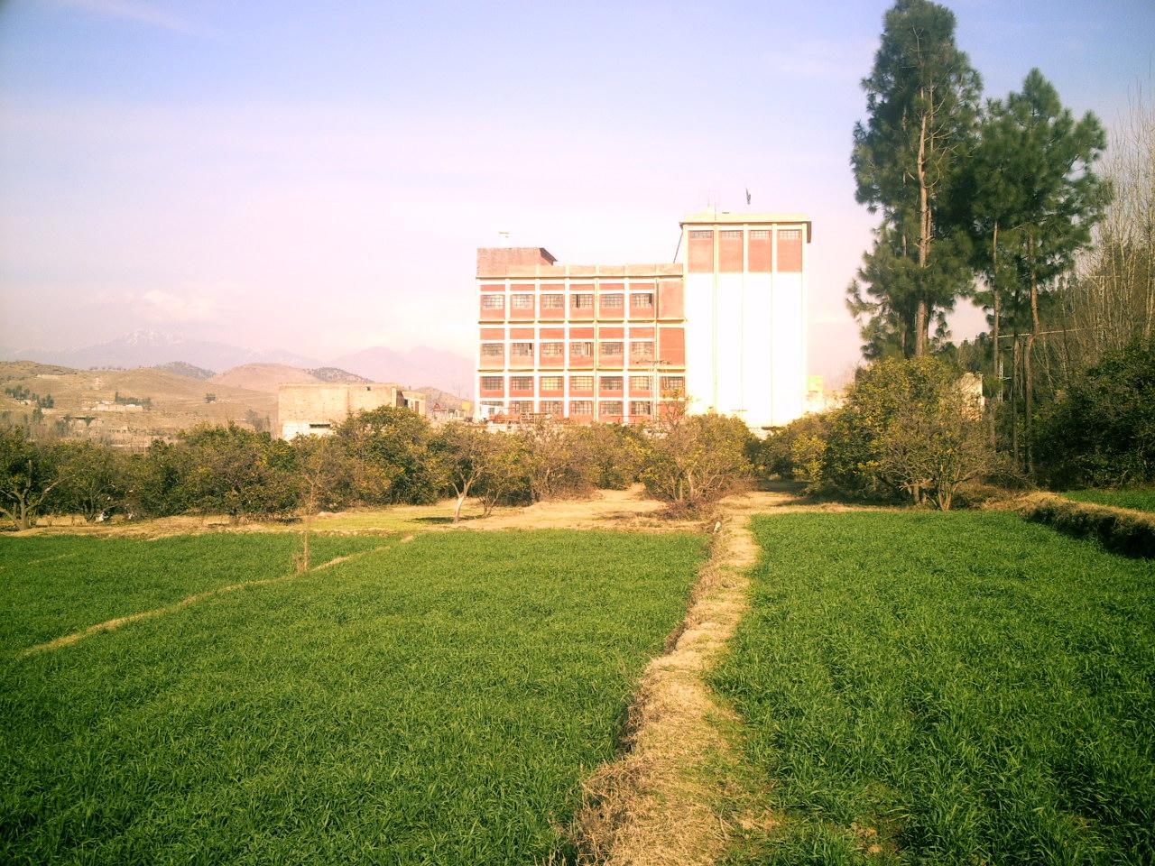 A view of Ettihad Flour mills Thrai