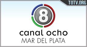 Watch 8 Plata Argentina