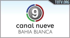 9 Bahía Argentina tv online mobile totv
