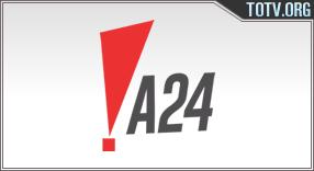 A24 Argentina tv online mobile totv