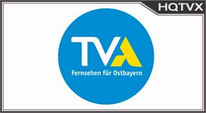 Aktuell tv online mobile totv