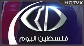 Watch Al Yawm