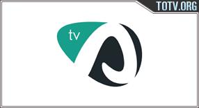 Alcoi tv online mobile totv