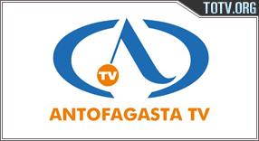Antofagasta Chile tv online mobile totv