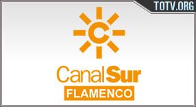 Canal Sur Flamenco tv online mobile totv