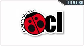 Carolina TV Chile tv online mobile totv