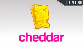 Cheddar tv online mobile totv