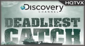 Watch Discovery Catch