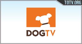 Dog TV tv online mobile totv