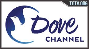 Dove Channel tv online mobile totv
