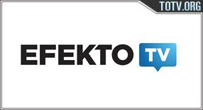 Efekto TV México tv online mobile totv