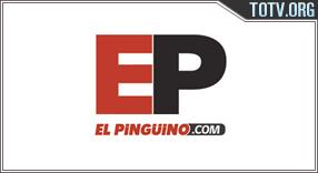 El Pingüino Chile tv online mobile totv