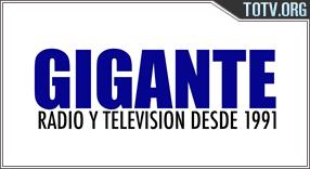 Watch Gigante