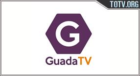 GuadaTV tv online mobile totv