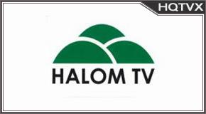Halom tv online mobile totv