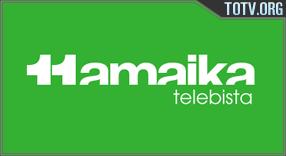 Hamaika Telebista Hedatzeko Taldea tv online mobile totv