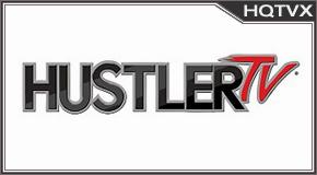 Hustler tv online mobile totv