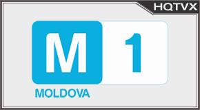 Moldova 1 tv online mobile totv