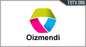 Infosare Oizmendi tv online mobile totv